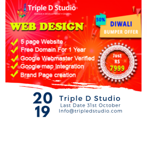 Triple D Studio Web Design Services